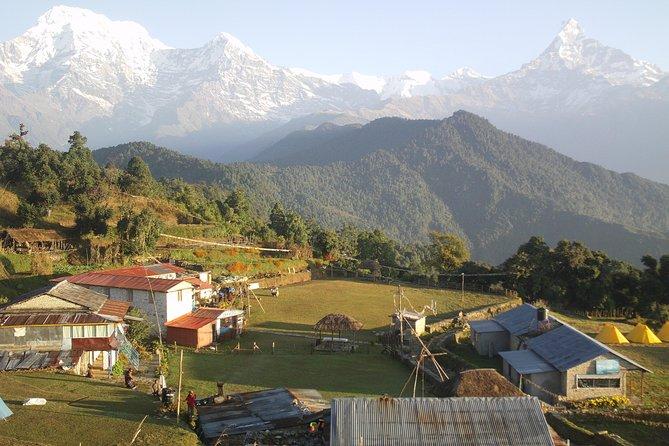 Day Trip in Pokhara