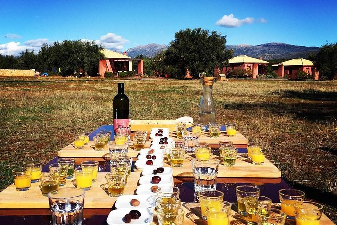 Olive oil tasting and Wine tasting in Laconia, Greece! photo 1