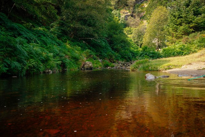 Enchanting Private Day Trip to Wicklow Mountains