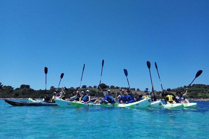 Guided half-day kayak tour