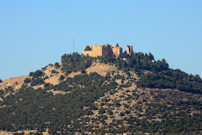 Jerash and Ajloun Castle Private Tour Full-Day Trip