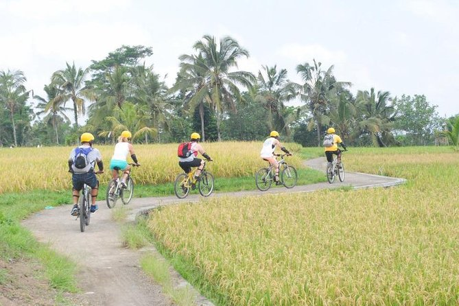 Bali Cycling all Inclusive