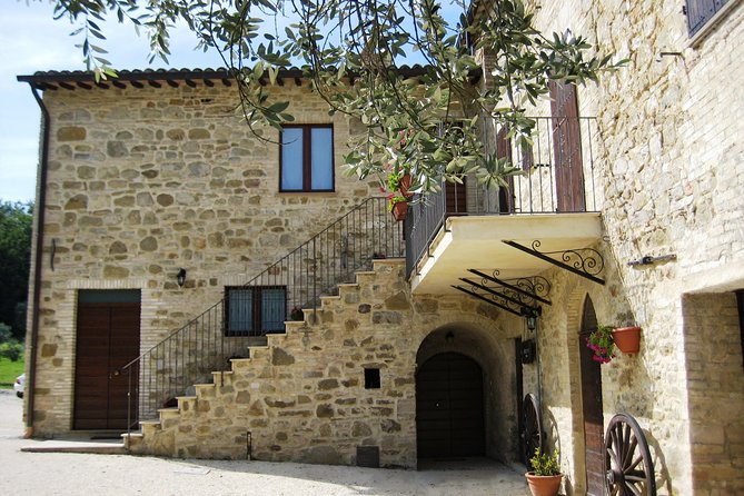 Wine Tasting Experience in a Charming Winery