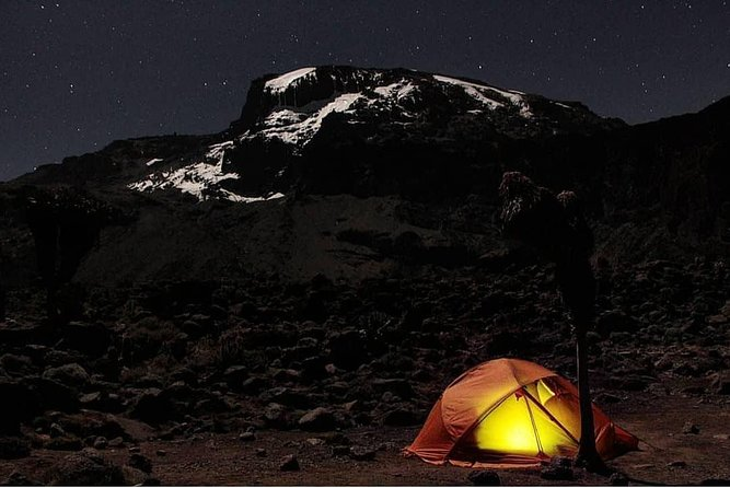 Climbing Kilimanjaro - 9 Day Northern Circuit