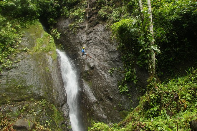 Rappelling down waterfalls with organic lunch and farm tour