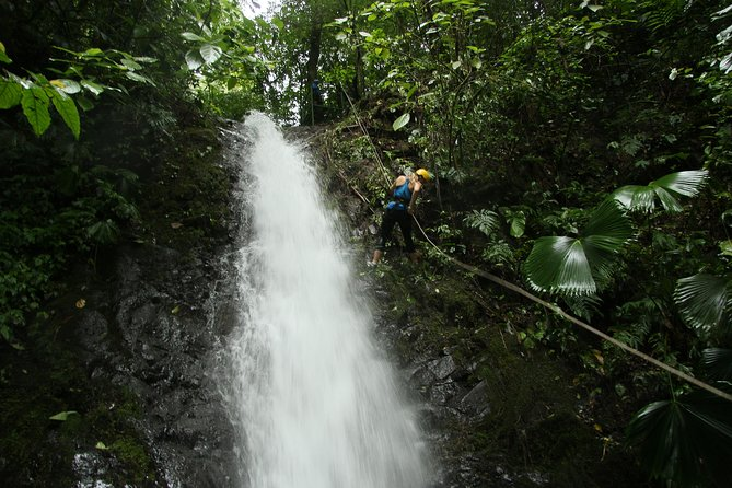 Rappelling down waterfalls with organic lunch and farm tour photo 20