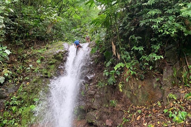 Rappelling down waterfalls with organic lunch and farm tour photo 21