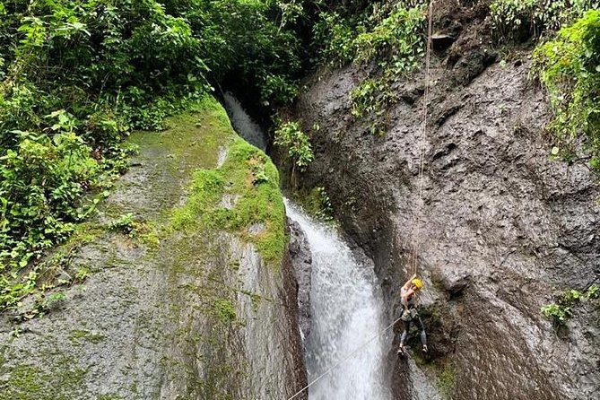 Rappelling down waterfalls with organic lunch and farm tour photo 8