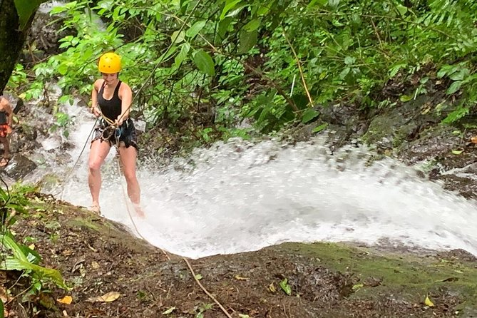 Rappelling down waterfalls with organic lunch and farm tour photo 3