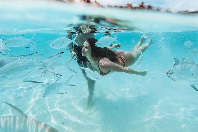 SNORKELING TRIP - BOA VISTA ISLAND DJEU key reef