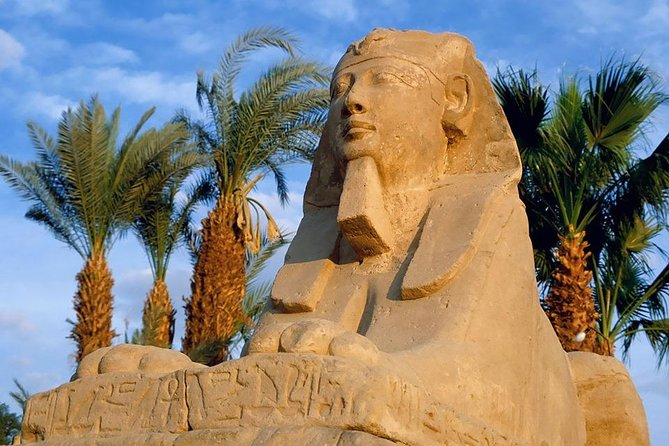 full day tour Pyramids of Giza and the Sphinx of Memphis and Saqqara photo 12