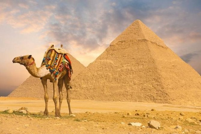 full day tour Pyramids of Giza and the Sphinx of Memphis and Saqqara photo 10