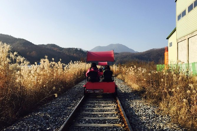 Day Trip to Nami Island with Rail bike and The Garden of Morning Calm