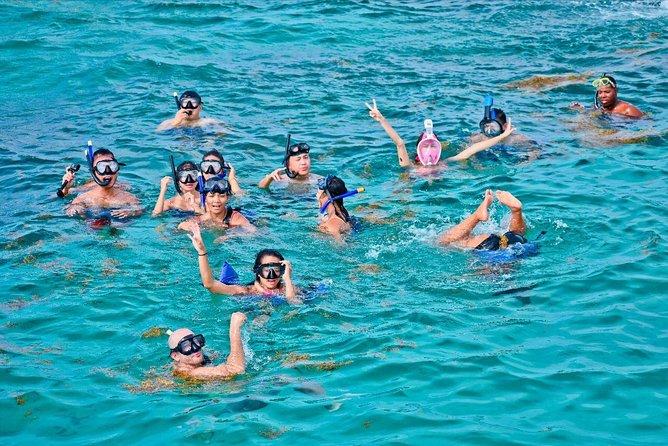 Catalina Island & Snorkling Tour