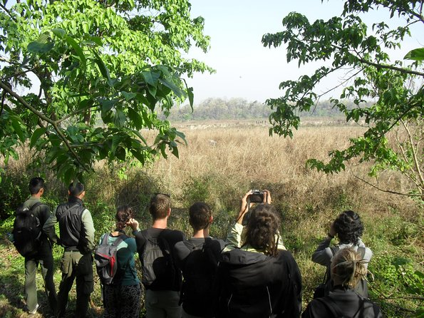 Day Trip in Chitwan National Park, 1Day Package