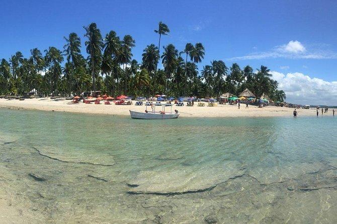 Aries Beach Private Tour - Group 1 to 6 PAX - Leaving Maragogi