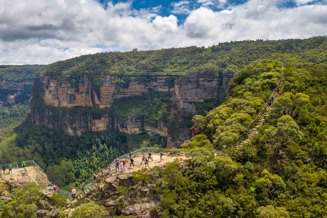 Stray Australia: Blue Mountains - Day Tour