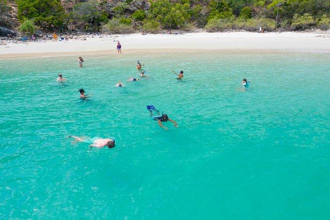 Stray Australia: Brisbane to Cairns - Freestyle Travel Pass