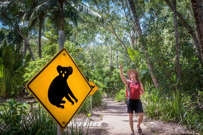 Stray Australia: Brisbane to Cairns Freestyle Tour photo 15