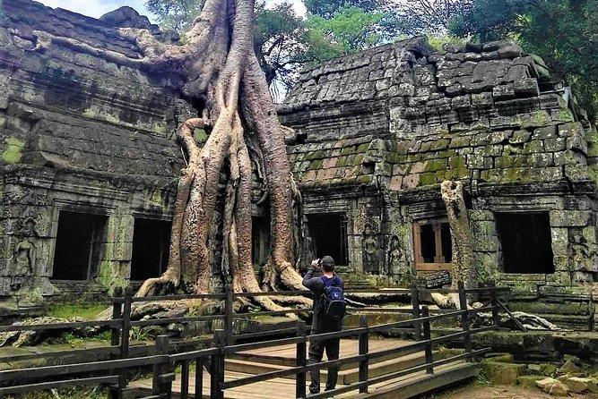 Angkor Highlights Full-Day Tour by TukTuk