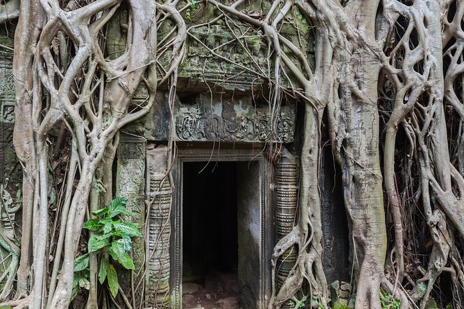 Private Angkor Three Best Temples Tour photo 14