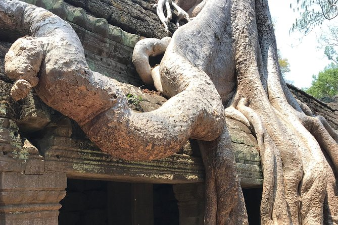 Private Angkor Three Best Temples Tour photo 8