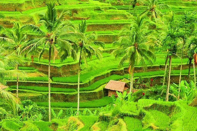 Bali Full-Day Local Heritage Sightseeing Trip with Lunch