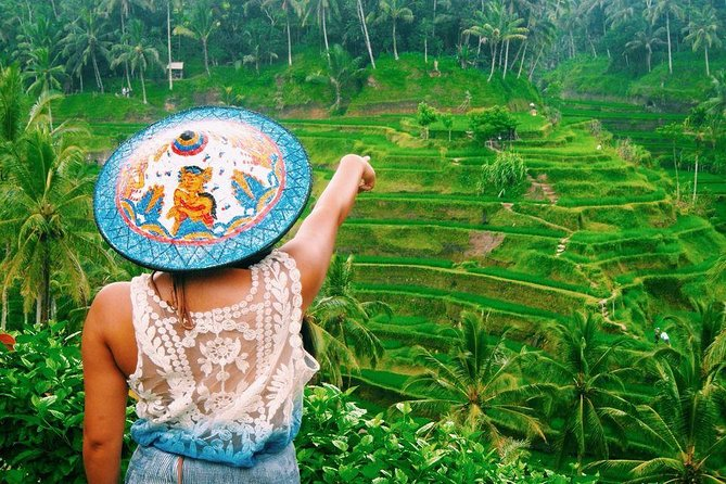 Best of Ubud Tour with Waterfall, Rice Terraces & Monkey Forest Including Lunch