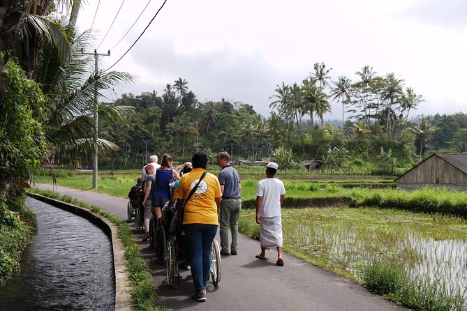 Accessible Indonesia for Seniors and Travellers with Disabilities photo 6