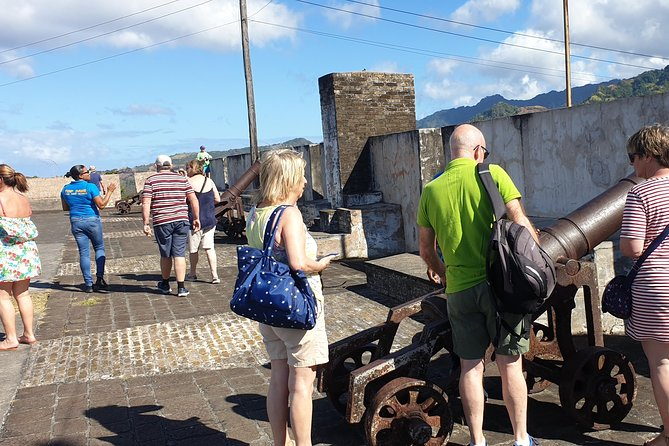 Kingstown, Fort Charlotte, jardins botaniques et plage w / Topdawg Taxi and Tours