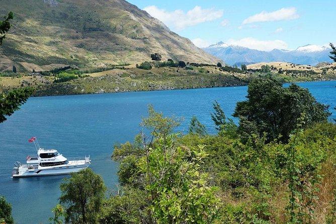 1-Hour Ruby Island Cruise and Walk from Wanaka