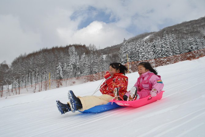 Winter Fun at Mt. Fuji: Fujiyama Snow Resort Yeti & Strawberry Picking photo 7