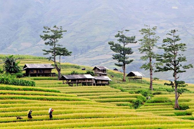 From Hanoi: 3 days exploring Sapa all inclusive
