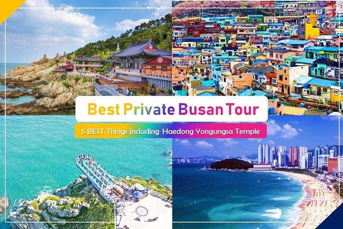 Busan Shore Excursion Private Tour : Haedong yonggungsa temple and more