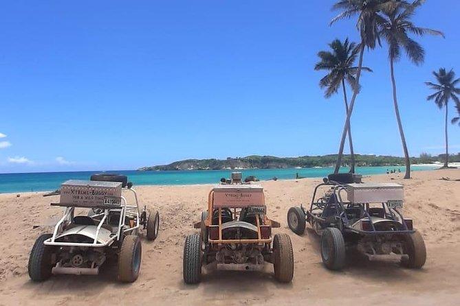 Aventura de meio dia em buggies para dunas em Punta Cana