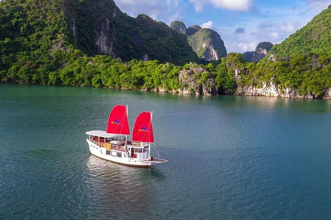 Amazing Sails Explorer Ha Long Bay Day Trip - Luxury Small Group (5-8 persons)
