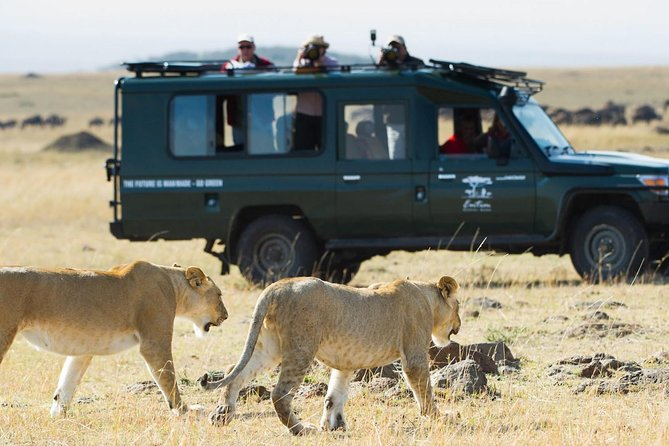 3-Day The Famous Masai Mara Luxury Safari