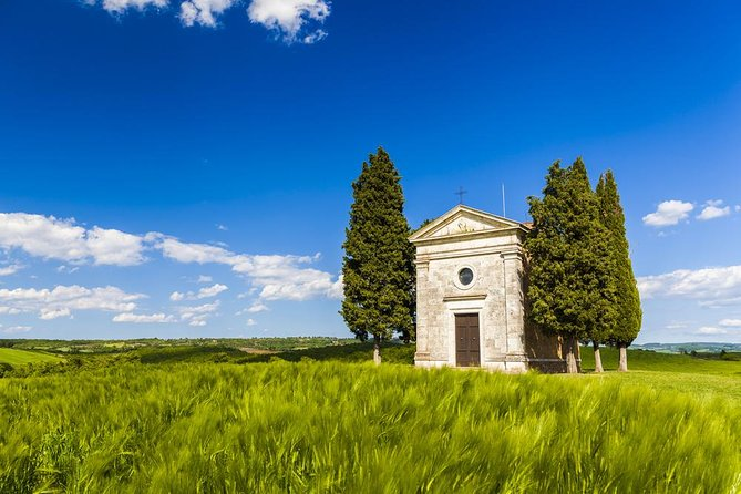Val d'Orcia private tour: Montalcino, Pienza and Montepulciano