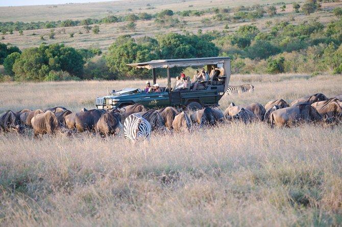 4-Day The Taste of Kenya Safari