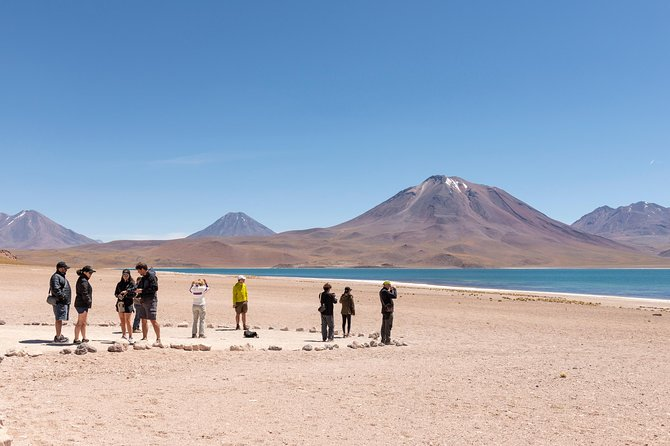 Altiplanic Lagoons and Piedras Rojas Tour - Full Day Tour - Private Option
