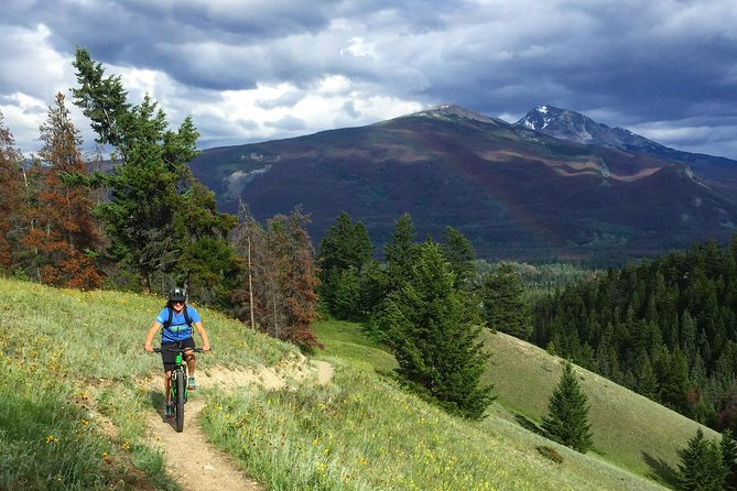 Private guided mountain bike tour half day