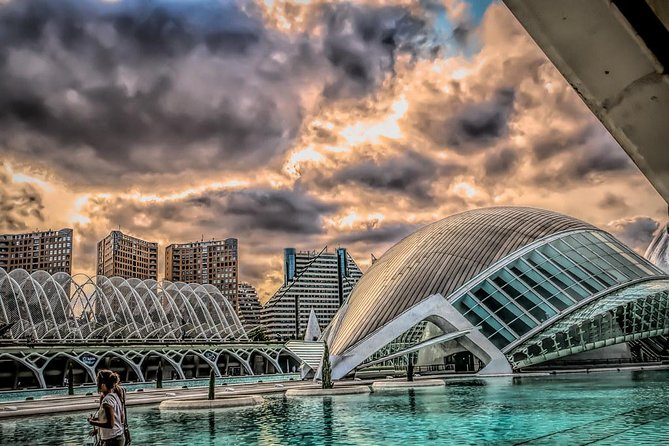 Private 4-hour Walking Tour of Valencia with official tour guide