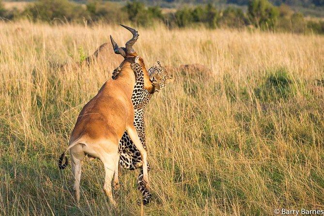 Nairobi National Park Tour