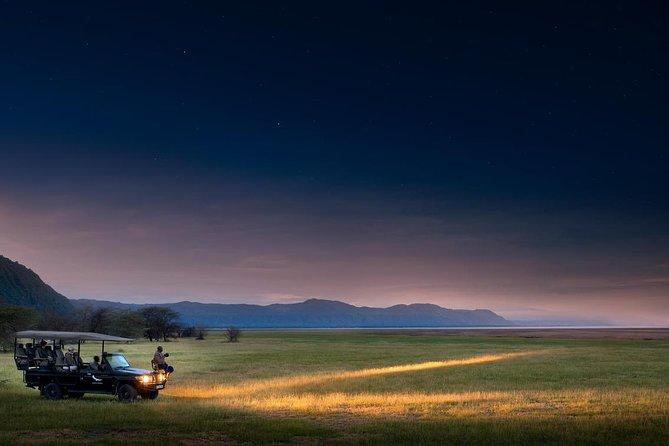 Night Game Tour In Lake Manyara National Park