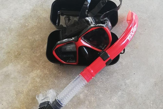 Mask and snorkel photo 3