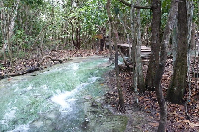 Krabi Rainforest Discovery Tour With Picnic Lunch & Hotel Transfers photo 3