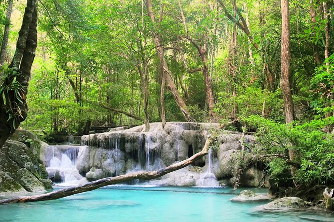 Krabi Rainforest Discovery Tour With Picnic Lunch & Hotel Transfers photo 1