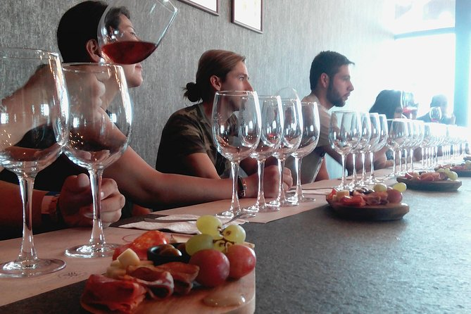 Local Vineyard, Tasting, and Culture Tour