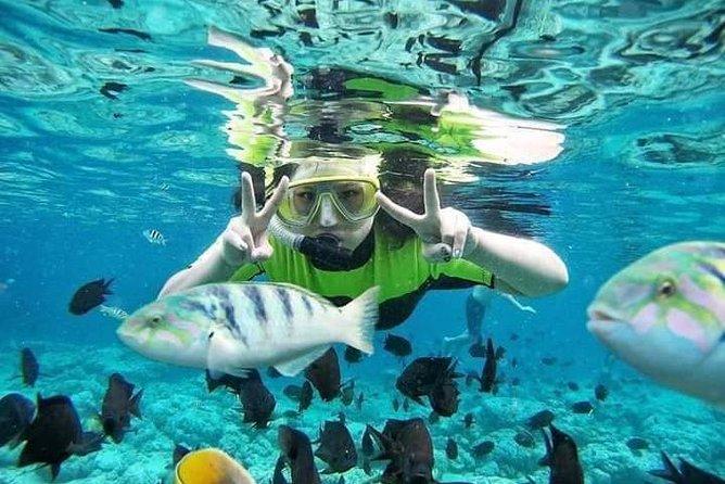 Snorkeling Bali Blue Lagoon - Fast Boat To Gili