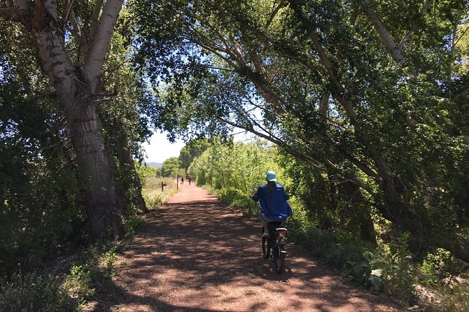"2 Hour Ebike Ride at ""The Peavine Trail"" (POPULAR )"